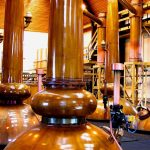 FREE SUPPORT FOR DISTILLERIES COMMITTING TO GOING GREEN